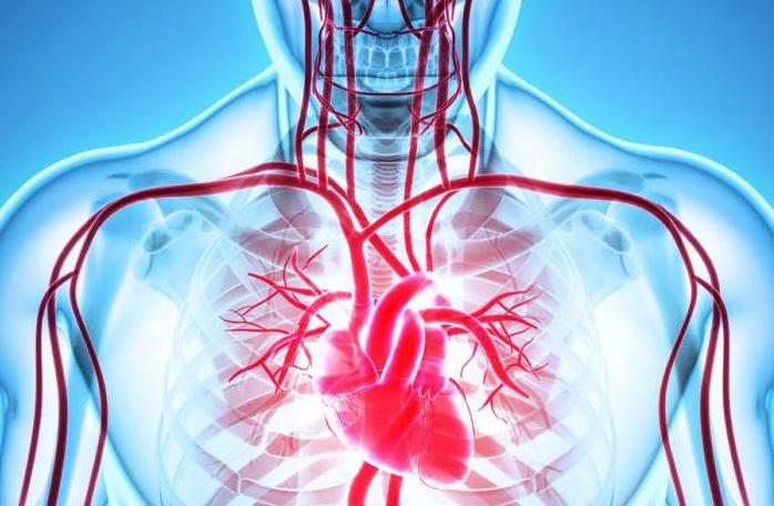 koronel kalp hastalığı